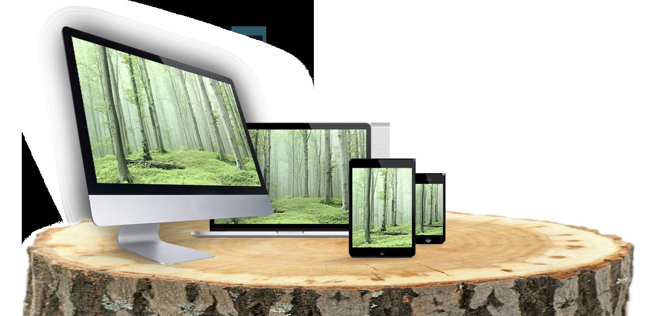 responsive Webdesign Webseiten Gestaltung Webseite erstellen Webdesigner