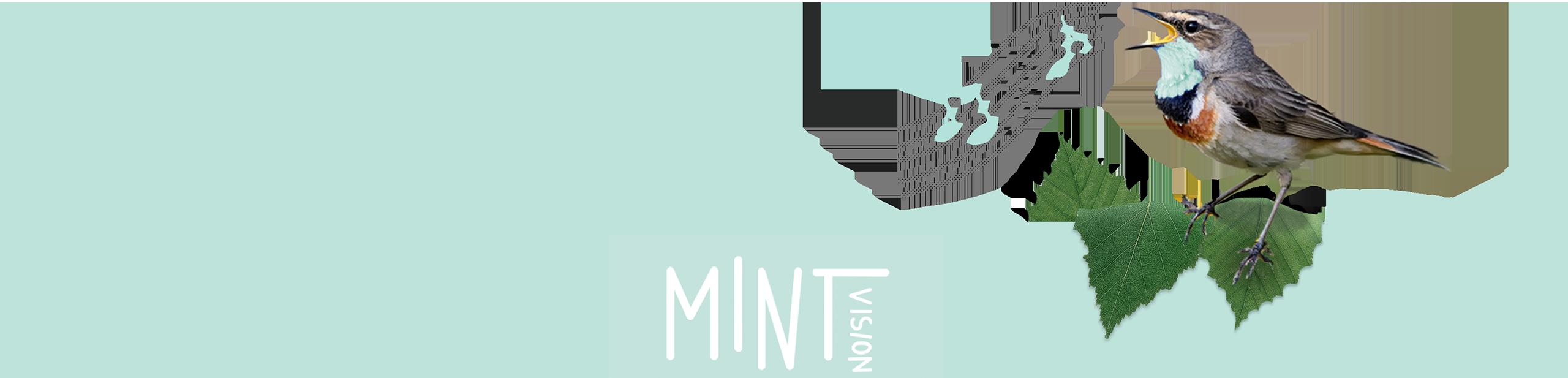 Werbeagentur Hamburg MINTvision